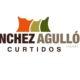 Sanchez Agullo Logotipo