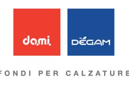 Logotipo de DAMI-DEGAM